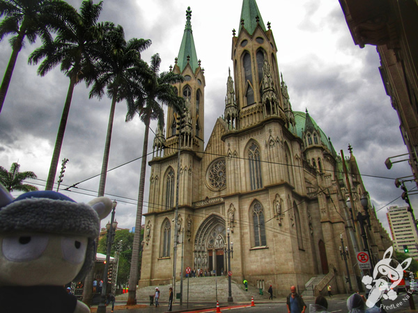 Tribunal de Justiça do Estado de São Paulo | FredLee Na Estrada