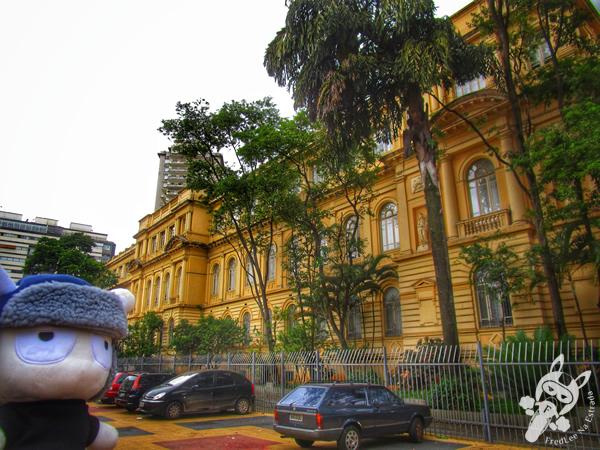 Theatro Municipal de São Paulo - SP | FredLee Na Estrada