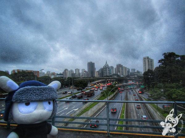 Parque Ibirapuera | São Paulo - SP | FredLee Na Estrada