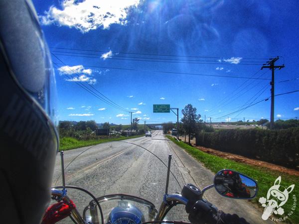 Rodovia BR-277 - Paraná | FredLee Na Estrada