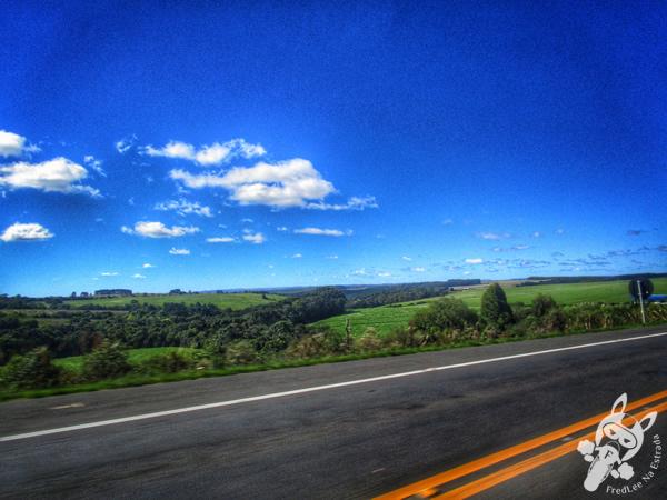 Rodovia BR-376 - Paraná | FredLee Na Estrada