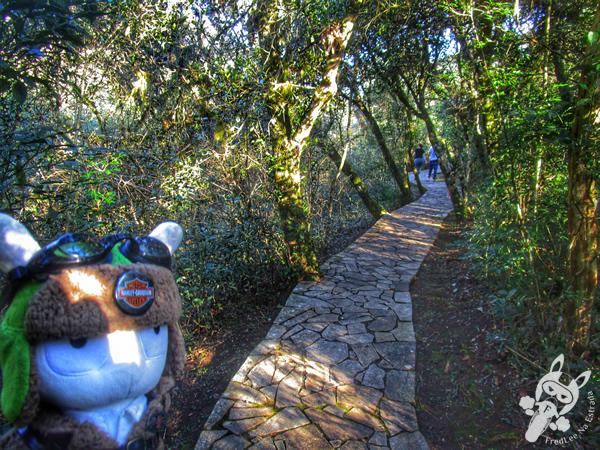 Parque Ambiental Governador Manoel Ribas - Ponta Grossa - PR | FredLee Na Estrada