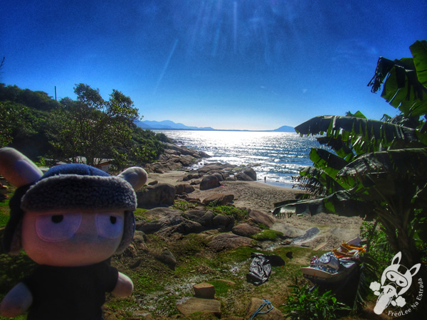 Prainha da Barra da Lagoa - Florianópolis - SC | FredLee Na Estrada