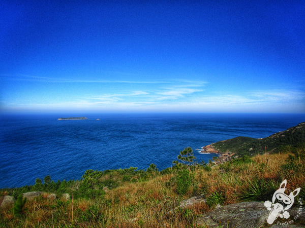 Praia da Galheta - Florianópolis - SC | FredLee Na Estrada