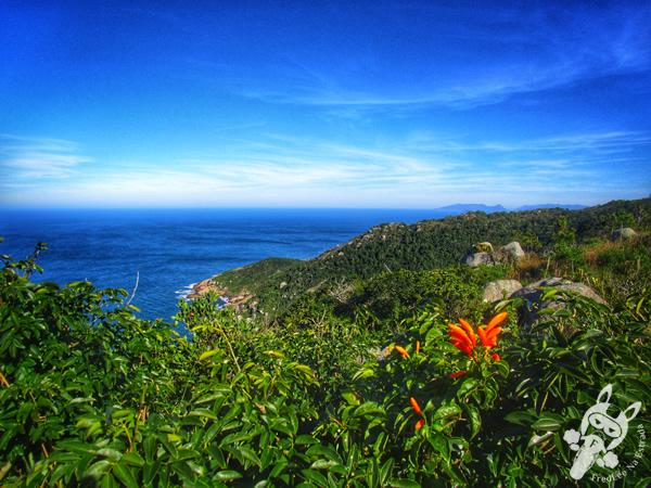 Praia Mole - Florianópolis - SC | FredLee Na Estrada