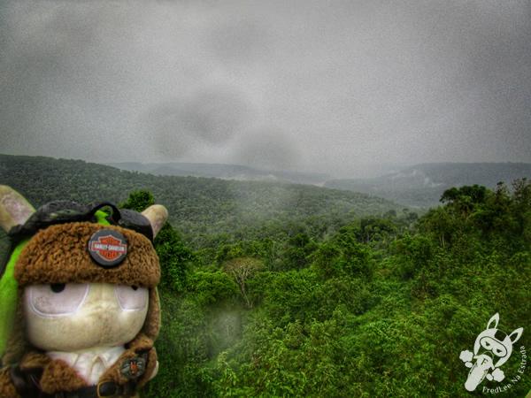 Parque Provincial Moconá | El Soberbio - Misiones - Argentina | FredLee Na Estrada