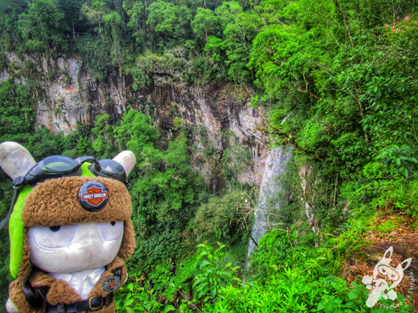 Parque Provincial Salto Encantado | Aristóbulo del Valle - Misiones - Argentina | FredLee Na Estrada