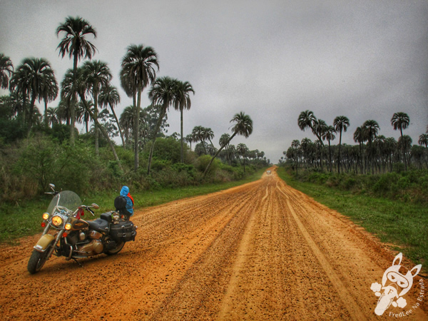 Parque Nacional El Palmar - Ubajay - Entre Ríos - Argentina | FredLee Na Estrada