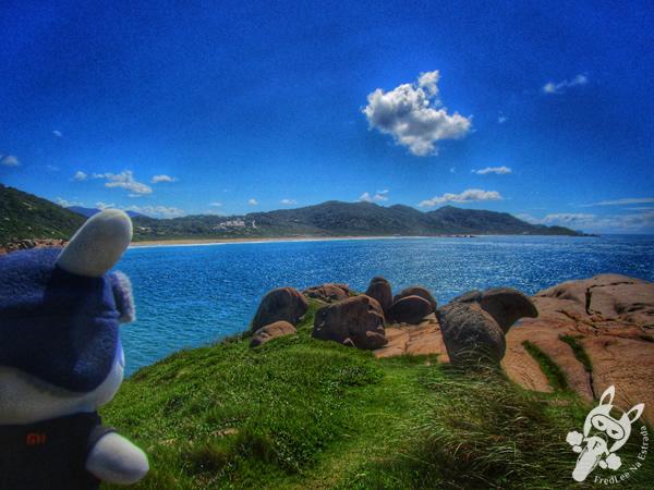 Trilha da Praia do Gravatá em Florianópolis – SC | FredLee Na Estrada