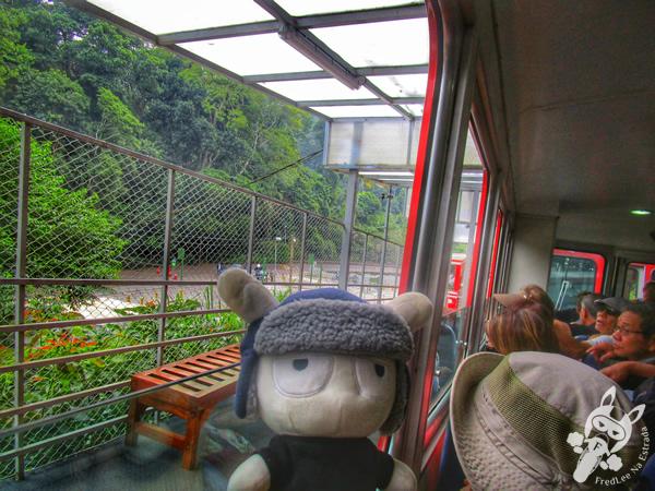 Trem do Corcovado - Santuário do Cristo Redentor - Rio de Janeiro - RJ   FredLee Na Estrada
