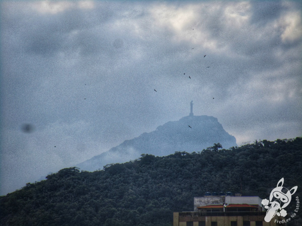 Estátua de Carlos Drummond de Andrade - Rio de Janeiro - RJ   FredLee Na Estrada