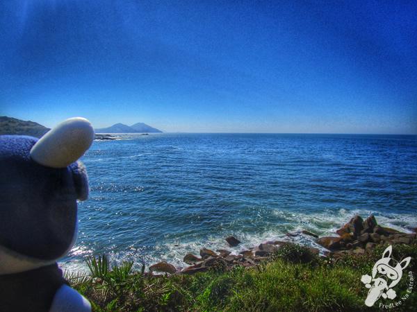Trilha da Praia do Rosa Norte - Praia Vermelha - Imbituba e Garopaba - SC | FredLee Na Estrada