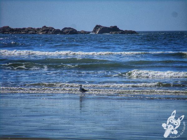 Trilha da Praia Vermelha - Praia do Ouvidor - Garopaba - SC | FredLee Na Estrada