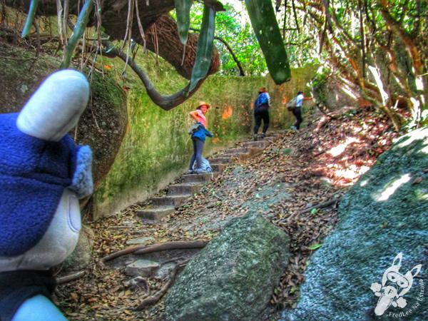 Trilha Ecológica do Morro do Macaco - Bombinhas - SC | FredLee Na Estrada