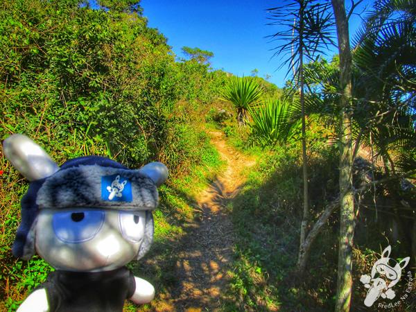 Praia da Tainha - Bombinhas - SC | FredLee Na Estrada