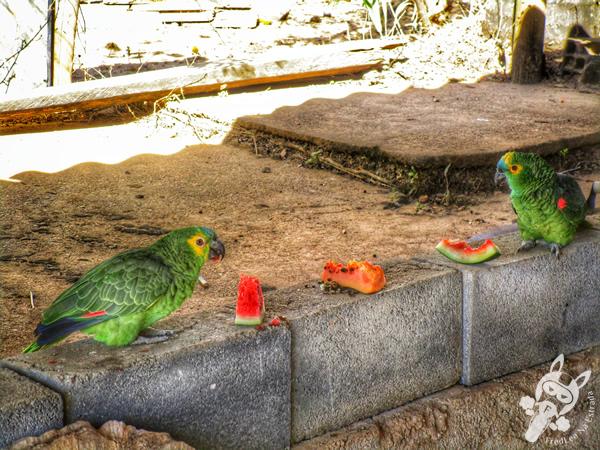 Portaria 1 do Parque Nacional da Serra da Canastra | FredLee Na Estrada
