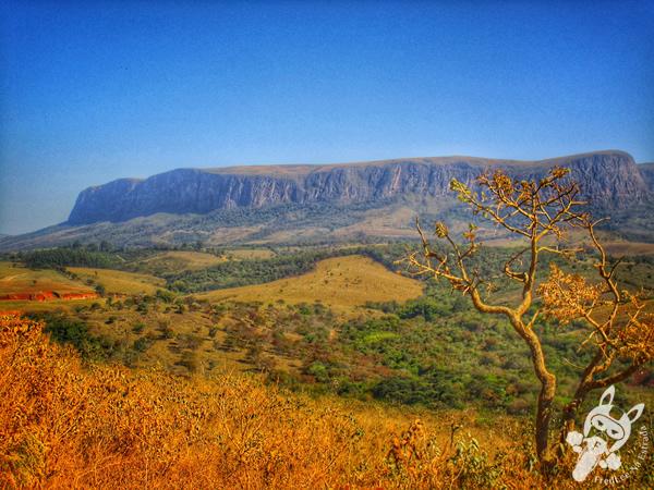 Parque Nacional da Serra da Canastra | FredLee Na Estrada