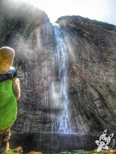 Tucano em São Roque de Minas - MG | FredLee Na Estrada