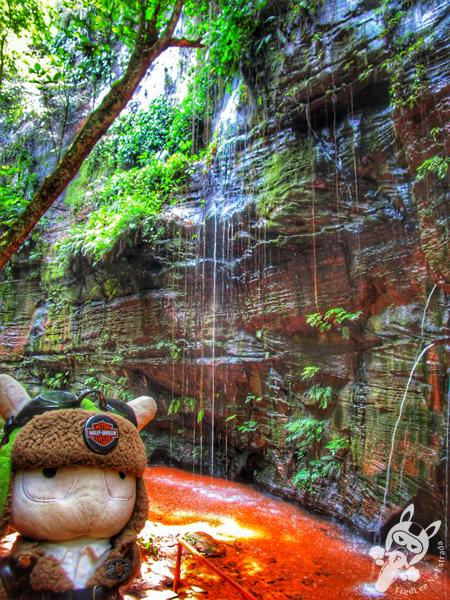 Cachoeira do Santuário | Santuário Ecológico Pedra Caída - Carolina - MA | FredLee Na Estrada