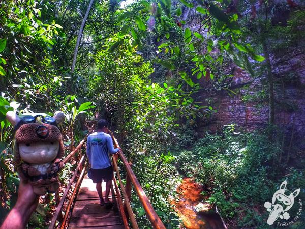 Cachoeira do Santuário   Santuário Ecológico Pedra Caída - Carolina - MA   FredLee Na Estrada