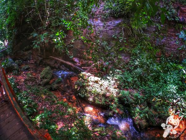 Ponte do Pedro   Santuário Ecológico Pedra Caída - Carolina - MA   FredLee Na Estrada