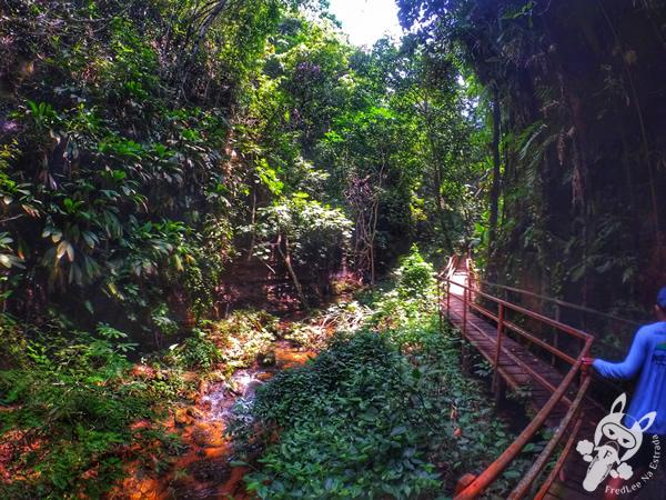 Ponte do Pedro | Santuário Ecológico Pedra Caída - Carolina - MA | FredLee Na Estrada