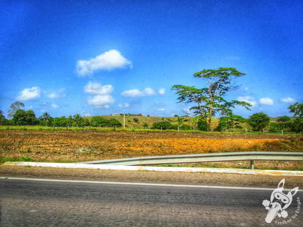 Rio Guamá | São Miguel do Guamá- PA | FredLee Na Estrada
