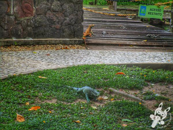 Farol de Belém no Mangal das Garças | Belém - PA | FredLee Na Estrada