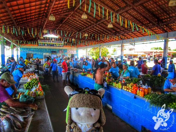 Mercado do Peixe de Santarém - PA | FredLee Na Estrada