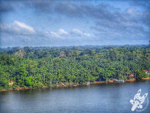 Goianésia do Pará - PA | FredLee Na Estrada
