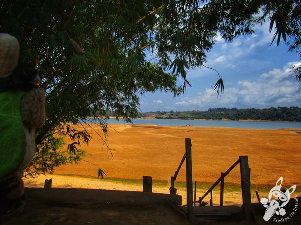 Botos no rio Tocantins | Marabá - PA | FredLee Na Estrada
