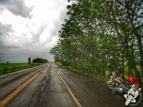 Rodovia BR-285 | Carazinho - RS | FredLee Na Estrada