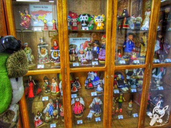 Museu de Artes Visuais Ruth Schneider e Museu Histórico Regional | Passo Fundo - RS | FredLee Na Estrada
