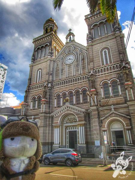 Catedral Nossa Senhora Aparecida | Passo Fundo - RS | FredLee Na Estrada