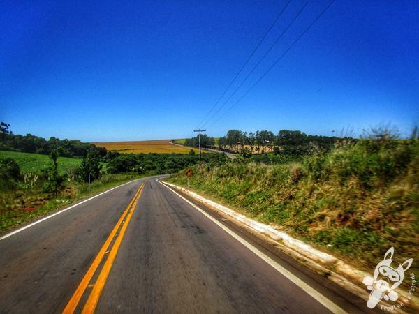 Rodovia RS-463 | FredLee Na Estrada