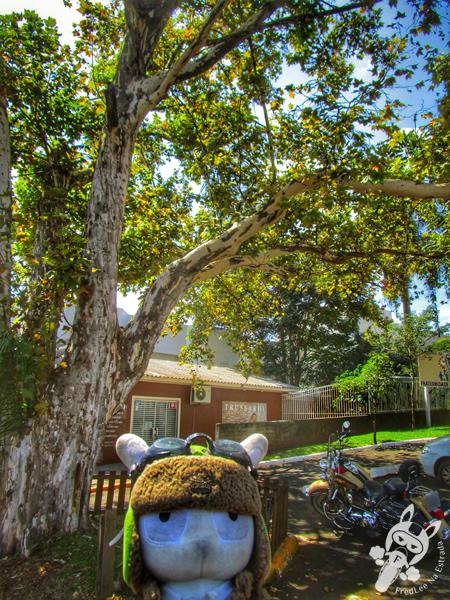 Casa da Cultura Maria Rosa | Xanxerê - SC | FredLee Na Estrada