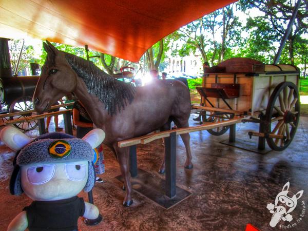 Reencontrando a Formosa | FredLee Na Estrada