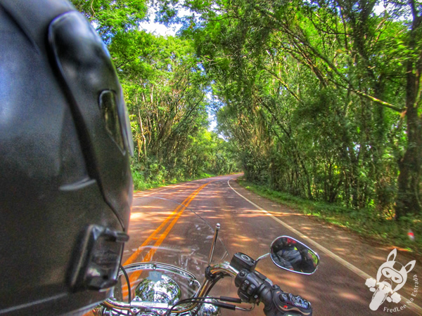 Ponto de ônibus em Jacutinga - RS | FredLee Na Estrada