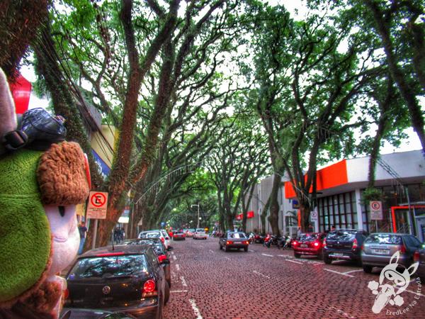 Chafariz na Praça Getúlio Vargas | Santa Cruz do Sul - RS | FredLee Na Estrada