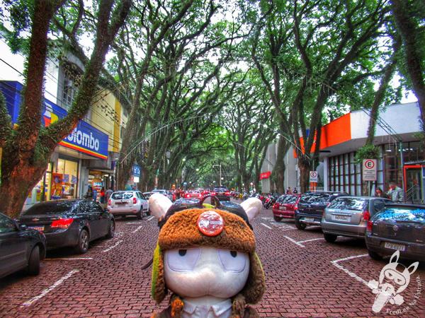 Casa das Artes Regina Simonis e Associação Pró-Cultura | Santa Cruz do Sul - RS | FredLee Na Estrada