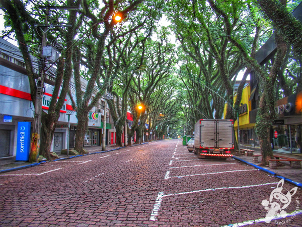 Parque da Gruta | Santa Cruz do Sul - RS | FredLee Na Estrada