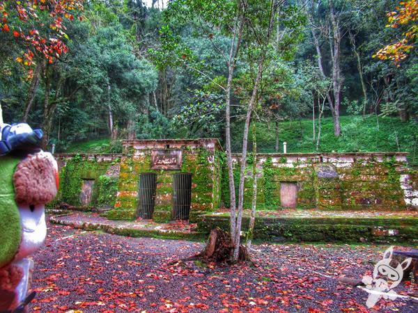 Parque da Gruta | Santa Cruz do Sul - Rio Grande do Sul - Brasil | FredLee Na Estrada