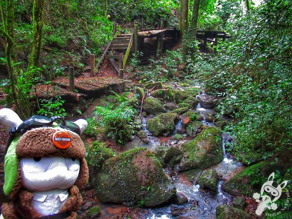 Cachoeira - Casa de Retiro Loyola | Santa Cruz do Sul - RS | FredLee Na Estrada