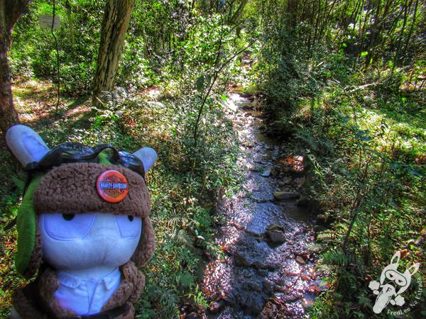 Parque Ecológico Municipal Honorato Toniolo | Guaporé - RS | FredLee Na Estrada
