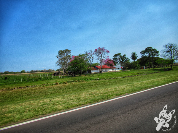 Corrientes - Corrientes - Argentina | FredLee Na Estrada