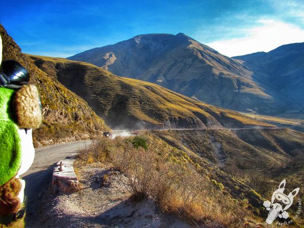 Cuesta del Obispo | Valles Calchaquíes - Salta - Argentina | FredLee Na Estrada