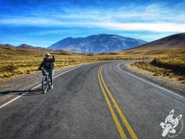 Recta del Tin Tin | Valles Calchaquíes - Salta - Argentina | FredLee Na Estrada