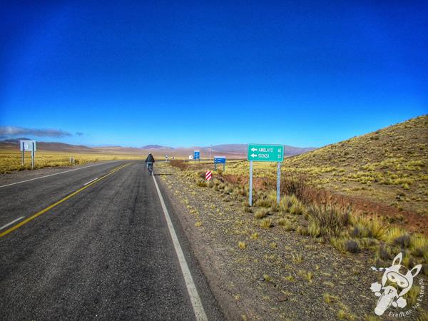 Ruta Provincial 33 | Recta del Tin Tin - Valles Calchaquíes - Argentina | FredLee Na Estrada