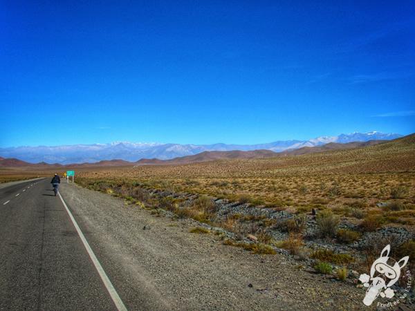 Ruta Provincial 33 | Valles Calchaquíes - Argentina | FredLee Na Estrada