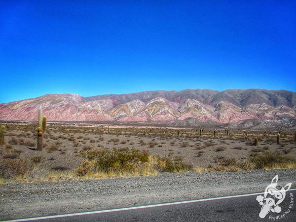 Parrilla de cabrito em Cachi - Salta - Argentina | FredLee Na Estrada